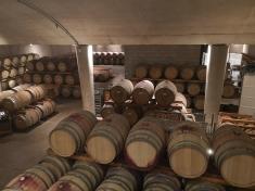 Jackson Triggs winery tour